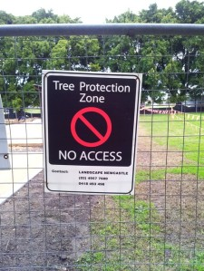 Wickham tree protection zone